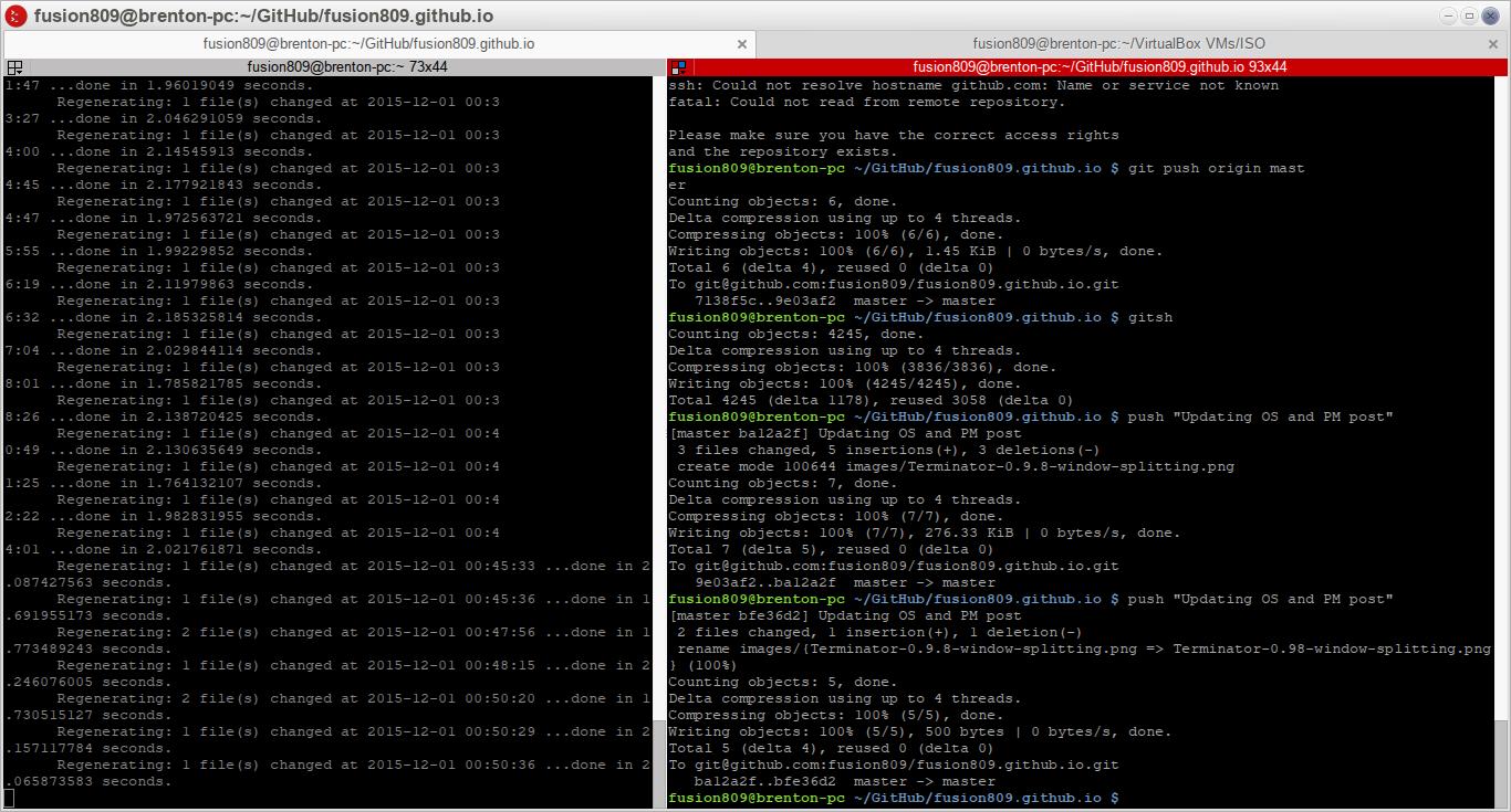 Terminator 0.98 running under Moksha, while I work on my blog in both windows